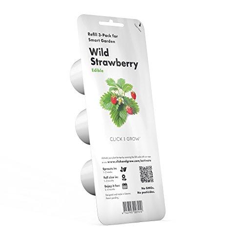 Click & Grow Lavender Refill 3-Pack for Smart Herb Garden